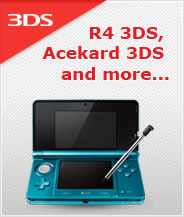 3DS Flash Cards
