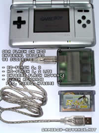 nintendo ds flash card gba